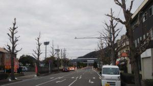 おはようございます。朝の紀三井寺競技場前から